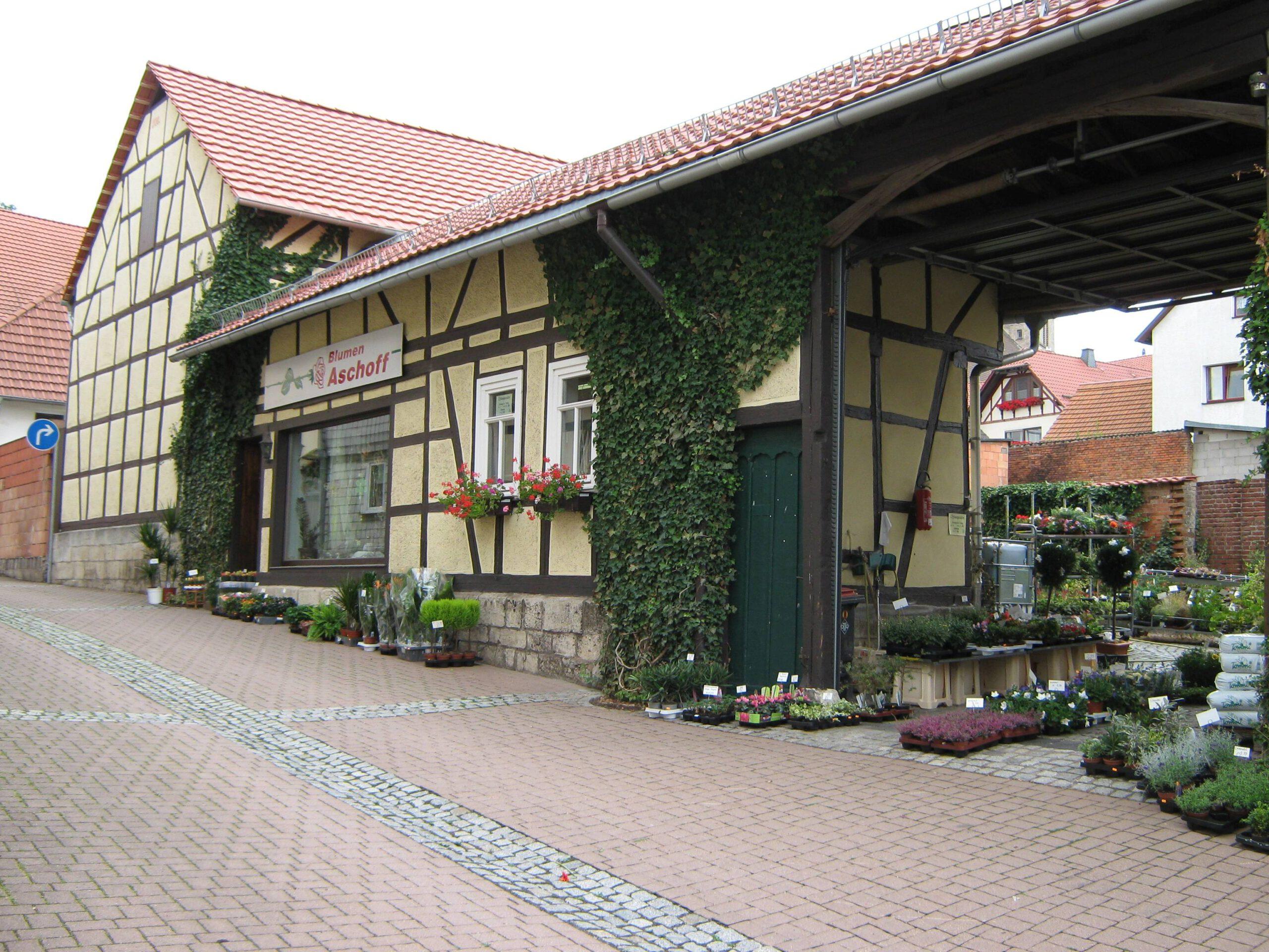 Blumen Aschoff Küllstedt